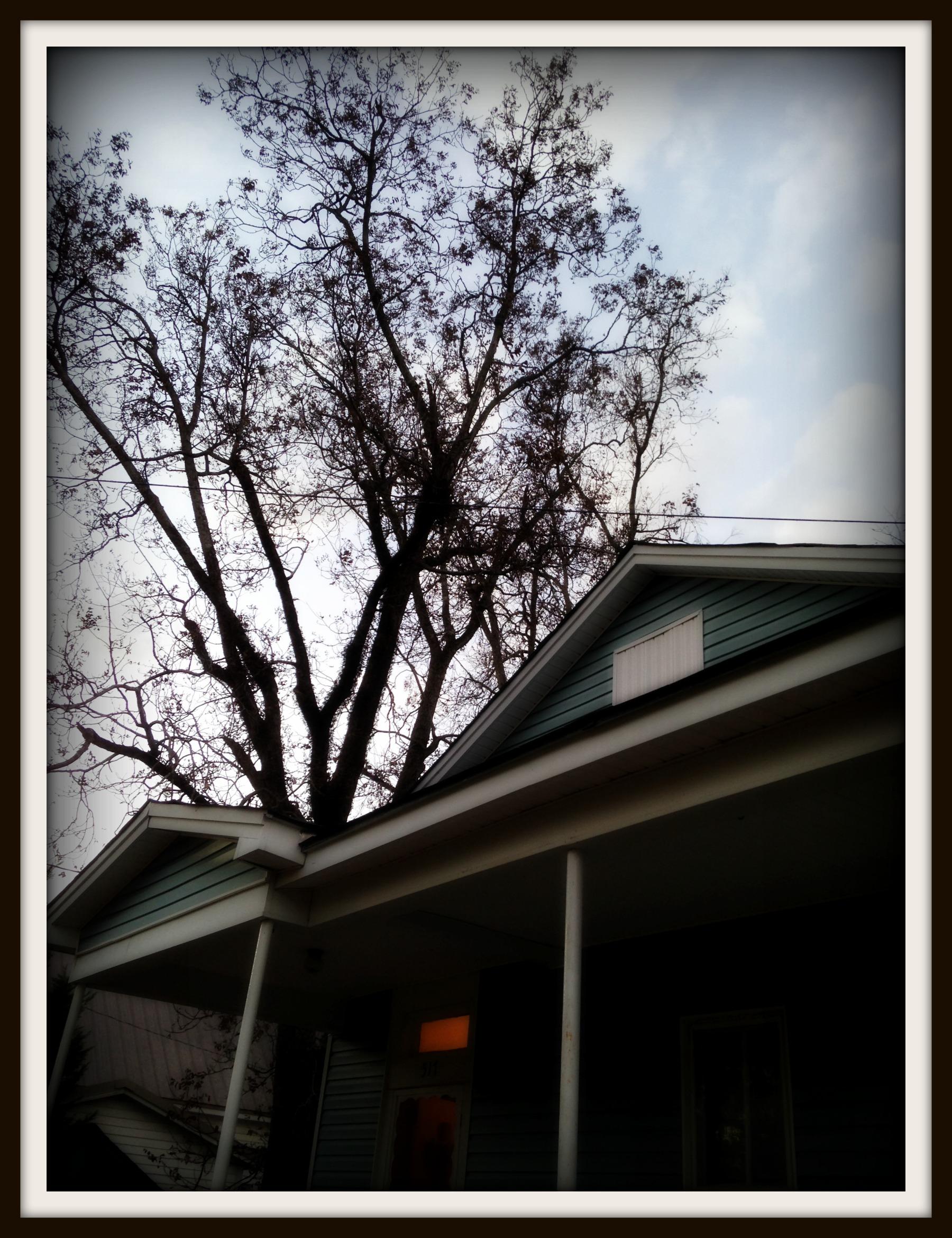 House and Sky
